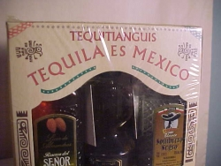 5 BOTTLES  MIXED TEQUILA 50ML MINIES
